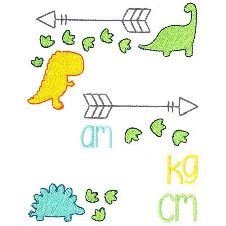 Dinosaur Birth Announcement Metric am