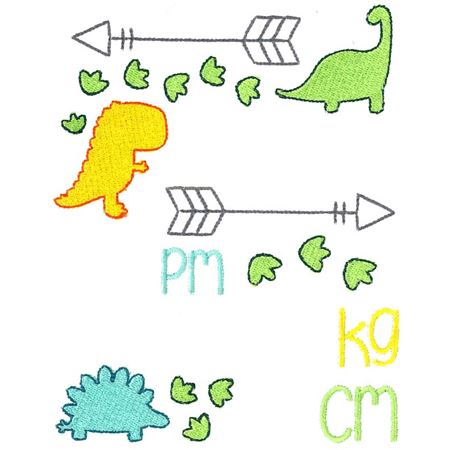 Dinosaur Birth Announcement Metric pm