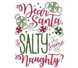 Dear Santa Is Salty The Same As Naughty