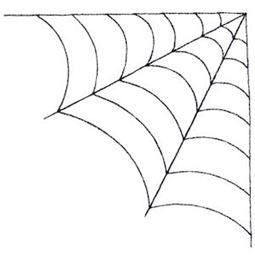 Halloween Bugs 5x7 16