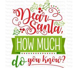 Dear Santa How Much Do You Know SVG