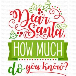 Dear Santa How Much Do You Know SVG