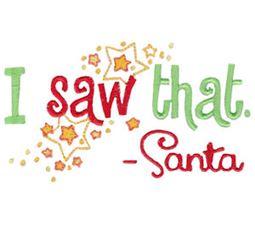 I Saw That Santa