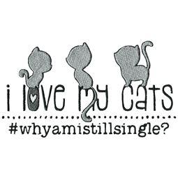 I Love My Cats Why Am I Still Single