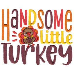 Handome Little Turkey