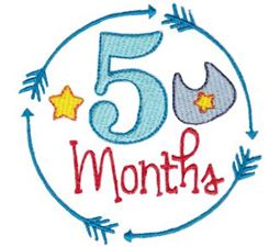 5 Months Baby Milestone