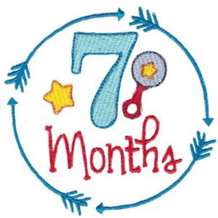 7 Months Baby Milestone