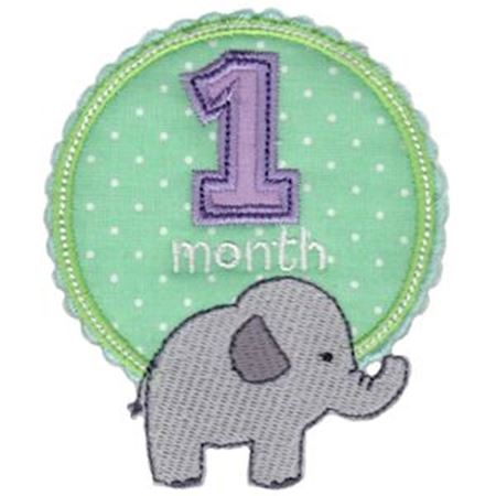Baby Months Applique 1