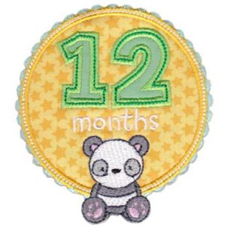 Baby Months Applique 12