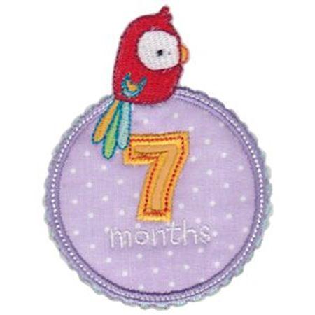Baby Months Applique 7