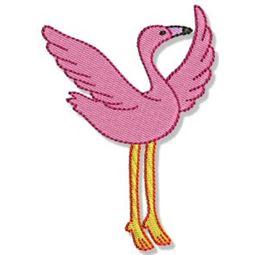 Flamingos 5