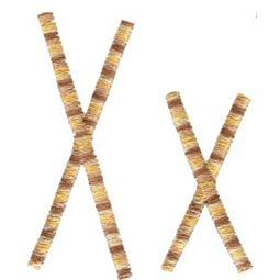 Slender Alphabet x