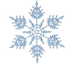 Snowflakes Too 13